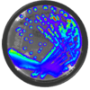 Bioware Bioluminescent Bacteria