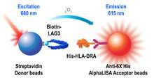 AlphaLISA binding assay