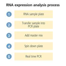 explorer G3 integrated real time PCR workstation assay flow