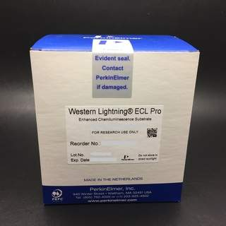 Western Lightning ECL Pro chemiluminescent substrates for western blotting
