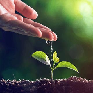 Air Water And Soil Analysis Perkinelmer