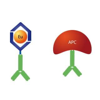 LANCE Eu-labeled antibody and SureLight-labeled antibody