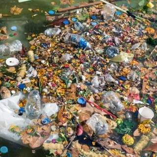 Microplastics Overview 4