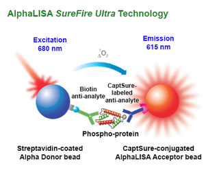AlphaLISA SureFire assay principle
