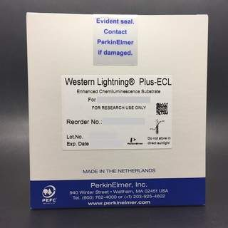 Western Lightning Plus chemiluminescent substrates for western blotting