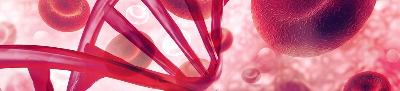 DNA_Blood_1310x300