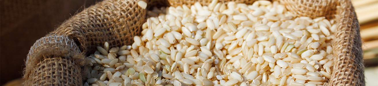 Heavy Metals Testing in Rice