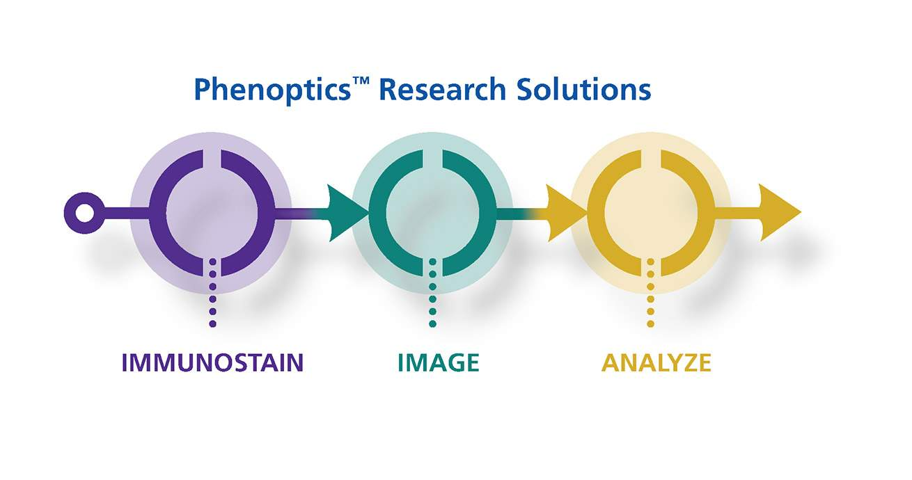 Phenoptics Research Solutions