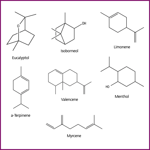 Residual Solvent Analysis | Terpene Analysis in Cannabis | PerkinElmer